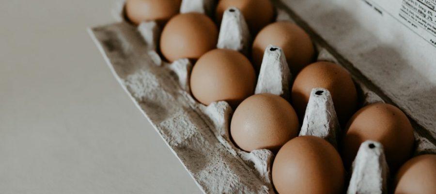 eierdoos